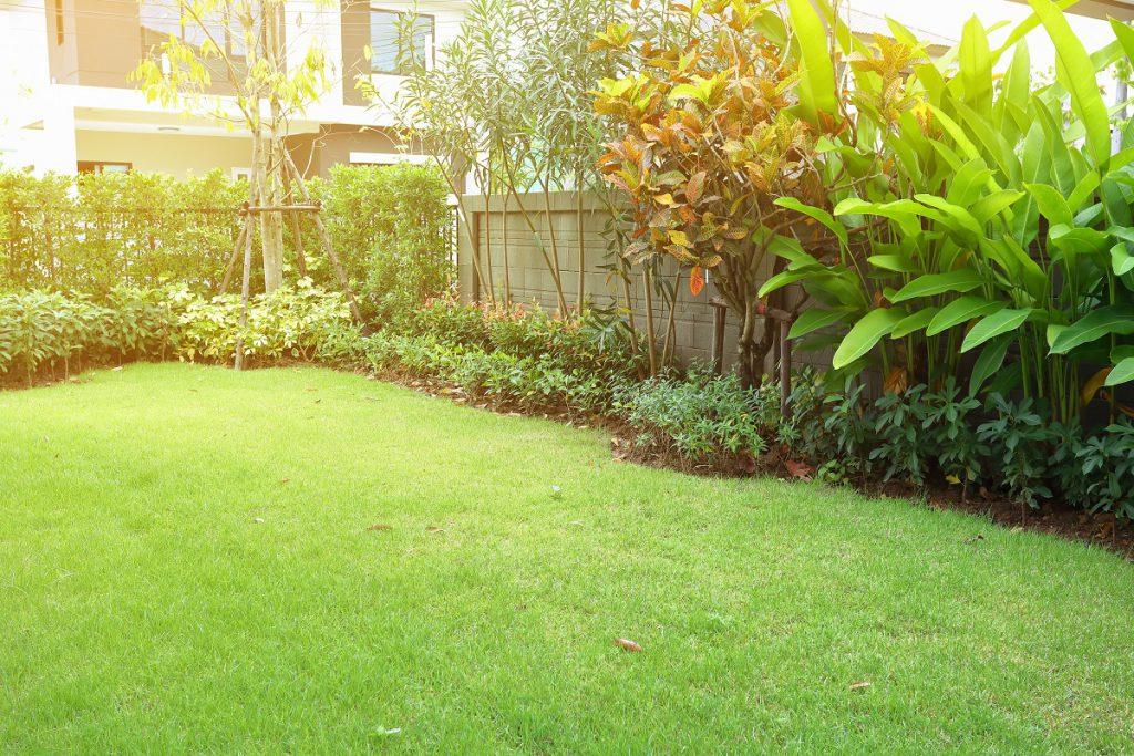 wąska działka ogródek